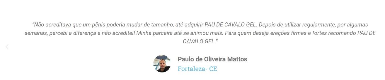 Pau De Cavalo Gel Funciona